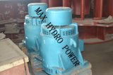 Mini / Small Cross Flow Tipo de lâmpada Micro Hydro Water Turbine Generator