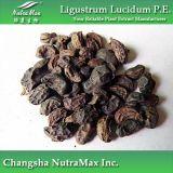 Выдержка Lucidum Ligustrum (Oleanolic кислота (используемая часть: Плодоовощ))