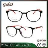 Het Optische Frame Van uitstekende kwaliteit T6016 van het Oogglas van Eyewear van de Glazen van de manier Tr90