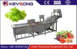 Gemüsereinigungsmittel-/Jujube-chinesische Dattel-Wasser-Luftblasen-Gemüse-Waschmaschine