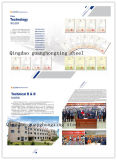 Placa de aço padrão de JIS, aço da placa para a construção/uso da indústria