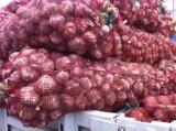 Prezzo più poco costoso del nuovo aglio del raccolto 2017