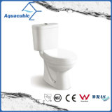 Washdown Tweedelig Ceramisch Toilet (ACT6858)
