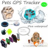 Animal familier GPS suivant le dispositif avec le remplissage de radio (V32)