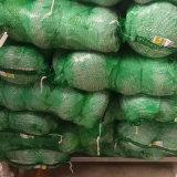 중국에서 신선한 양배추의 좋은 품질