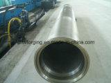 Le forgeage libre du tuyau de fonte ductile de coulée centrifuge moule