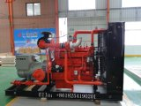 generatore del gas di 300kw Syngas