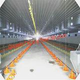 Высокая квалифицированная Prefab цыплятина стальной структуры расквартировывает для сбывания
