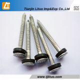 Professioal Hersteller-Spirale-Schaft-Dach-Nägel