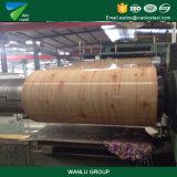 Preis-Hauptqualität strich galvanisierten Stahlring vor