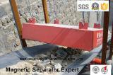 Séparateur magnétique permanent de suspension pour Removeing Iron-4