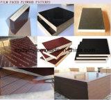las especificaciones Shuttering/película de la madera contrachapada de 18m m hicieron frente a la madera contrachapada del álamo