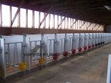 熱い電流を通された牛およびヒツジの農場のゲート