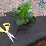 Non-Woven dei pp Spunbond per il tessuto di controllo di Weed di agricoltura