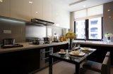 De nieuwe Hoge Glanzende Houten Keukenkast Van uitstekende kwaliteit Yb1707040 van het Ontwerp