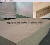 Fabricación de la madera contrachapada de la base de la madera dura en Shandong