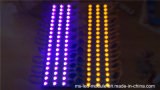 La venta caliente SMD impermeabiliza el módulo del LED