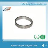 Magneet van uitstekende kwaliteit van het Neodymium van de Boog van Prestaties de Sterke
