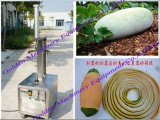Gemüsepapaya-Pampelmuse-Melone-Kantalupe-Kürbis, der Peeler-Maschine abziehend aufbereitet