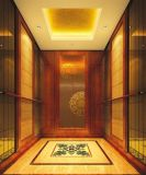 Good Quality Competitive Priceの贅沢なPassenger Elevator