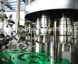La energía bebe el embotellado y el embalaje del animal doméstico hechos a máquina en China