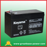 High Quality 7ah 12V Alarm System Battery Sealed Lead Acid Battery
