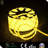 Belüftung-Gefäß-Farbe, die LED-Seil-Licht für Hochzeits-Dekoration ändert