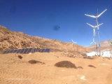 generatore di turbina orizzontale del vento 10kw con il regolatore e l'invertitore di su-Griglia