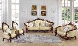 Sofá antiguo, sofá de cuero, nuevo sofá clásico (B011)