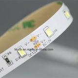 Qualidade elevada Ra80 IP65 2835 60LEDs de iluminação de LED/M