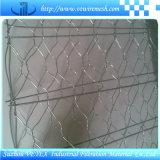 Electric 電流を通されたand PVC Gabionの上塗を施してある網
