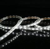 La haute tension 110V/220V 3528 60LED Bar lumineux à LED pour la décoration d'accueil