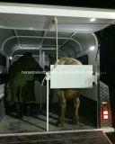 Neue Wirtschaft-gerader Pferden-Gleitbetrieb/Pferden-Schlussteil vom chinesischen Hersteller