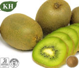 Alimentation Facotry 100% naturel de la poudre de fruits kiwi