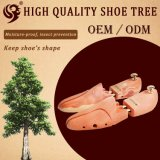 Normaler hölzerner Schuh-Baum-Lieferant in China