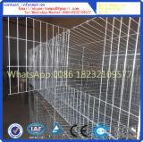 Jaula del conejo (venta directa de la fábrica)