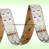 2중 선 144LEDs/M SMD2835&Nbsp; Warm&Nbsp; 백색 LED 지구