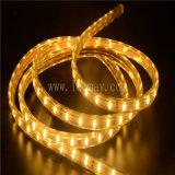 LED 밧줄 빛의 둘레에 변화하는 결혼식 훈장 2 철사