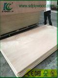 Okoume se enfrentan a la madera contrachapada para muebles y decoración.