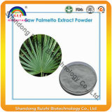Ácidos grasos - el extracto de la planta de la naturaleza consideró venta caliente del Palmetto P.E