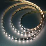 세륨 RoHS 유연한 LED 지구 3 년 보장 SMD2835