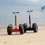 베스트셀러 전기 스쿠터 V5+ 바닷가 전기 스쿠터