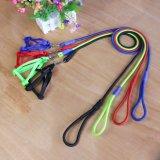 La correa del perro de Nylon baratas con mazo de cables