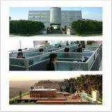 Badkuip van de Massage van de Ton van Monalisa de Populaire Vierkante Binnen Hete (m-2036)