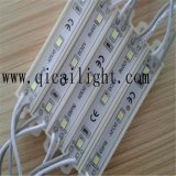 moduli 5050 di 1.44W LED con 3 anni di garanzia