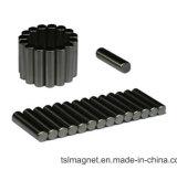 De gesinterde Permanente Magneten van NdFeB van de Cilinder van de Zeldzame aarde voor Industrieel