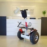 Auto del carrello di golf del nuovo prodotto della Cina che equilibra il motorino elettrico di golf