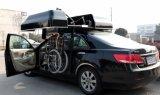 Contenitore di tetto dell'automobile della sedia a rotelle dalla Cina per stivare sedia a rotelle