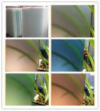 Вытравленное кислотой стекло приложения ливня, просвечивающие стеклянные экраны ливня