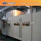 Máquina serva automática del moldeo por insuflación de aire comprimido